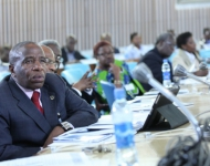 International Symposium on Peace Governance Security in Africa (63)